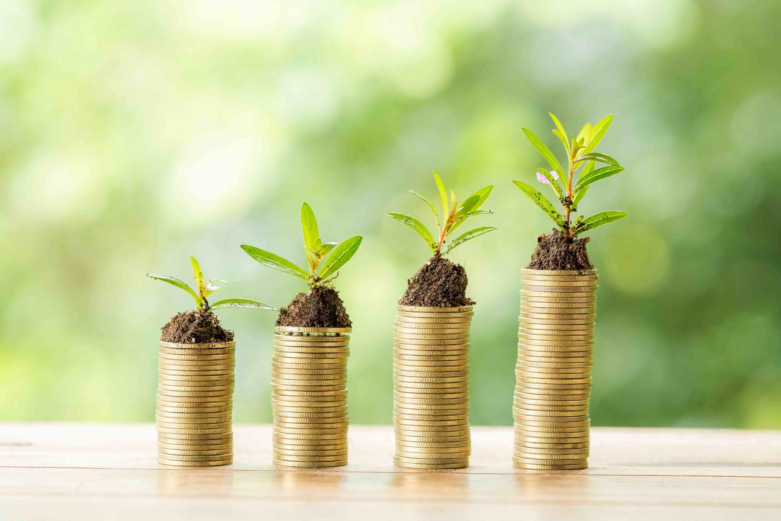 Lotes de inversión y por qué debes comprar uno